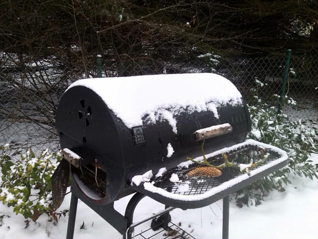 grill im winter